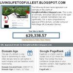 My blog is worth $29,338.57