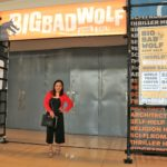 My Big Bad Wolf Book Sale Manila 2019 Book Haul